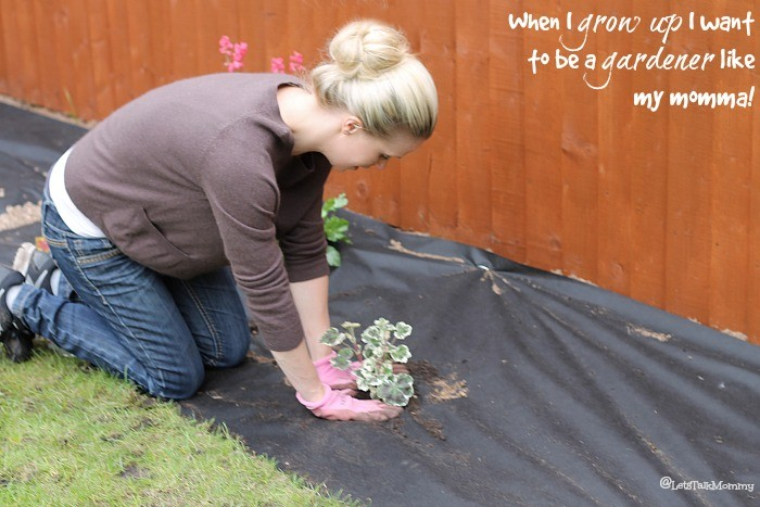 My Garden: Phase Two