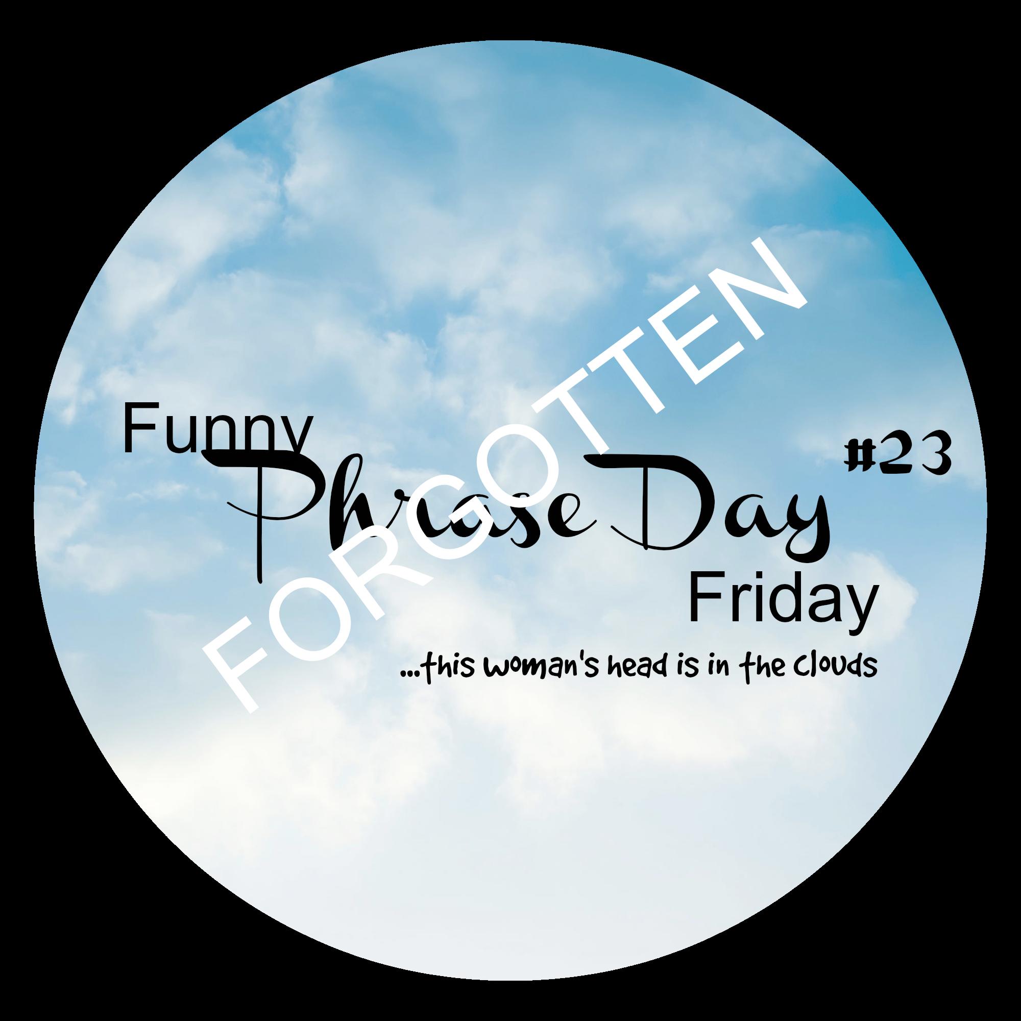{Funny Phrase Day Friday} #23