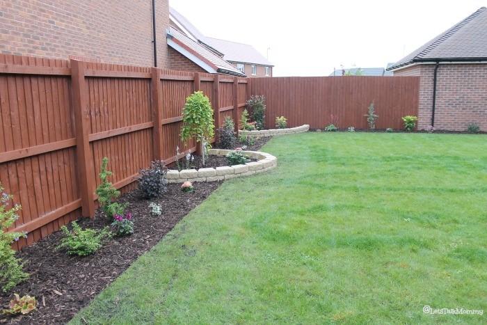My garden: Phase Three