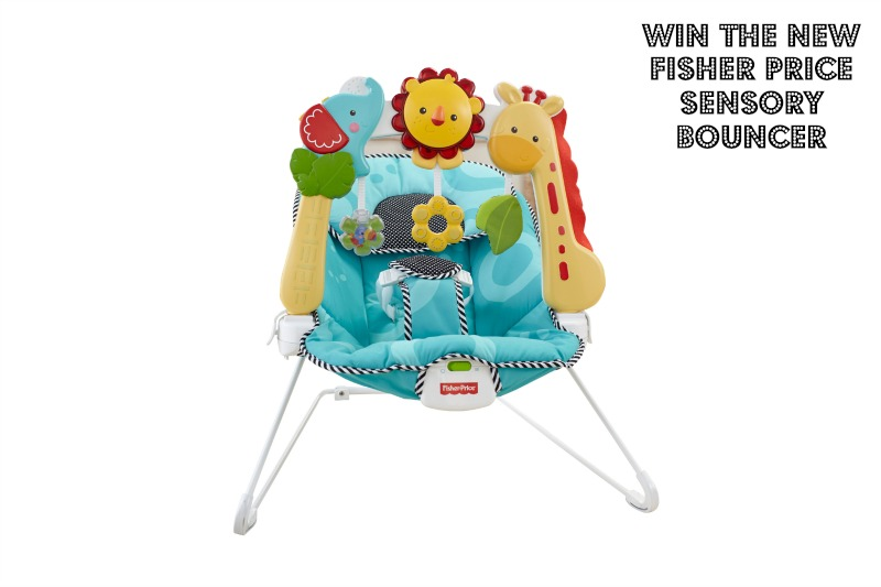 Saturday's Blogiversary Giveaway: Fisher Price Sensory Bouncer