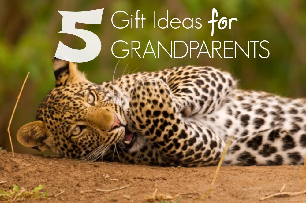 5 Top Gift Ideas for Grandparents