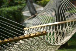 luxury essentials for your garden