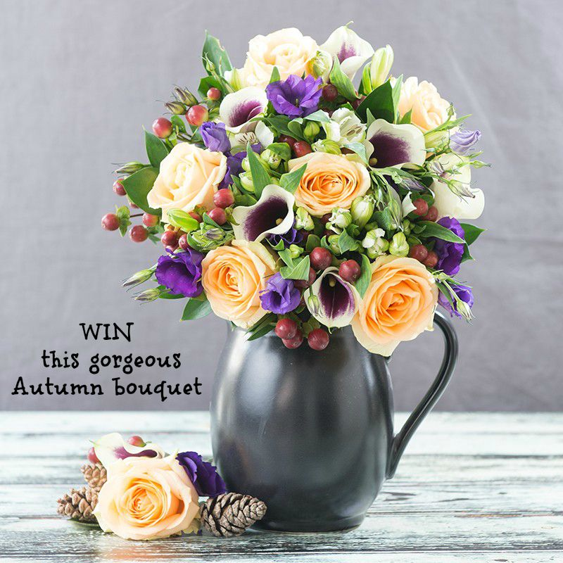 Saturday's Blog Birthday Giveaway: Appleyard London