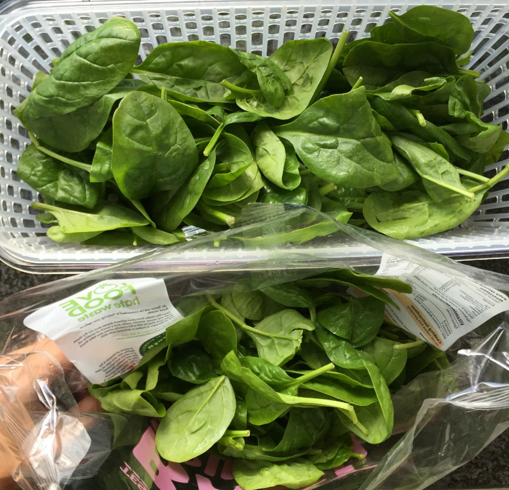 Chicken Salsa & Avocado Salad Recipe Oxo Good Grips GreenSaver Review