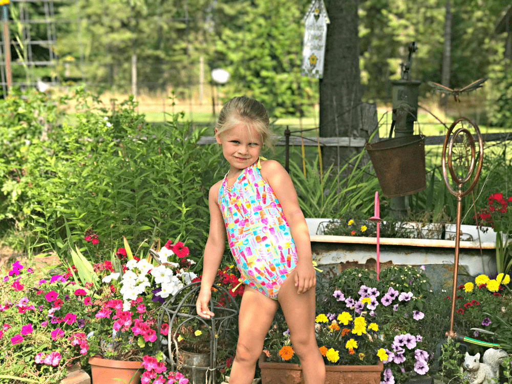 Snapshots & Scenes New Linky photography and video linky this summer