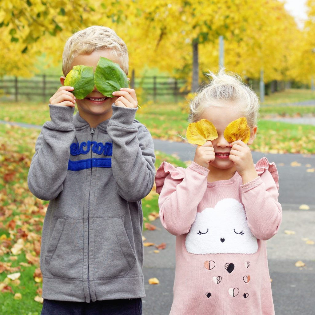 autumn kid's playing